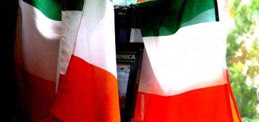 Bouquet de drapeaux irlandais (Crédit photo : Rennett Stowe)